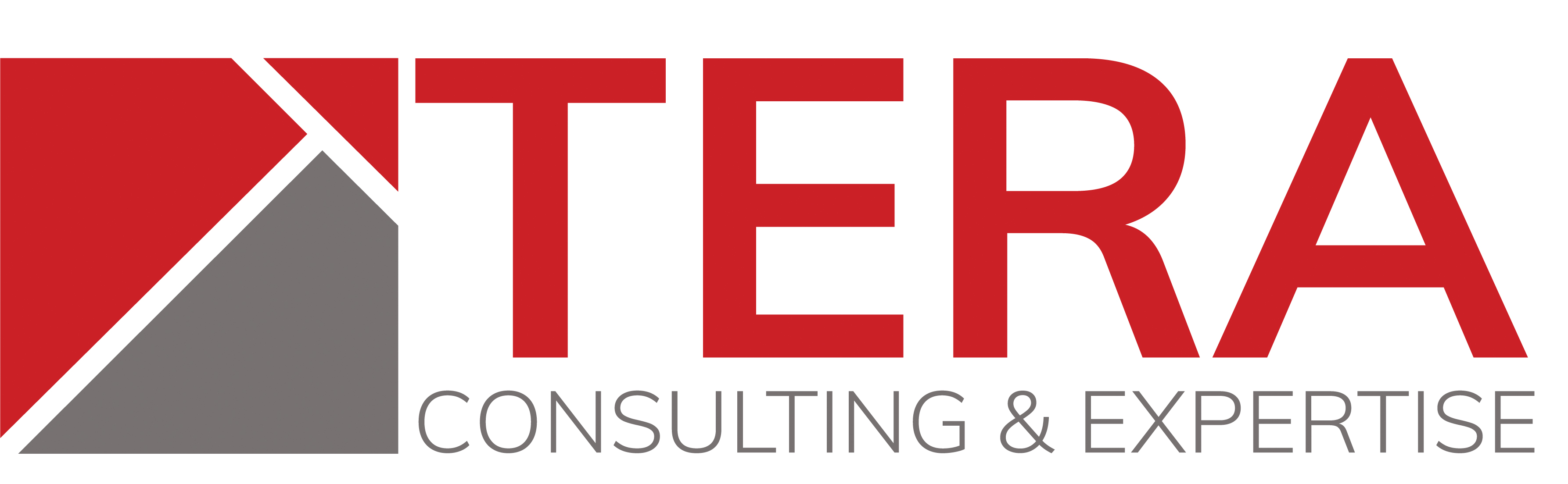 TERA Consultants